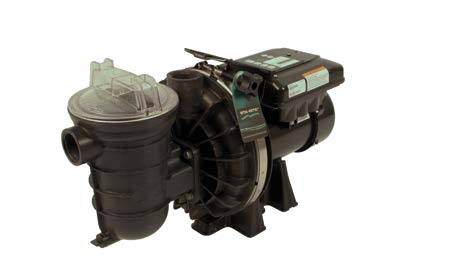 Pompe de filtration STA-RITE S5P2R