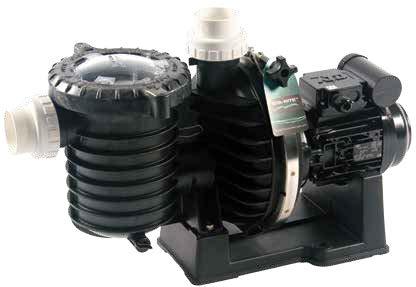 Pompe de filtration STA-RITE 5P6R